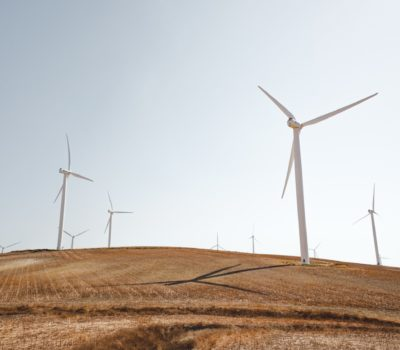 Holte Consulting leverer Prosjektledelse Konsulenter Prosjektrådgivning innen fornybar energi
